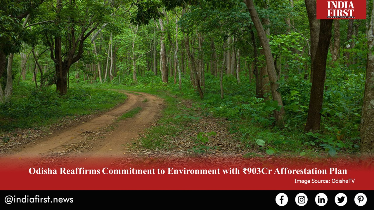 ₹903Cr Afforestation Plan